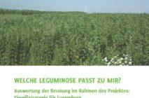 Broschüre über den heimischen Leguminosenanbau erschienen!