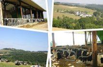 Tagesexkursion zum Thema solidarische Landwirtschaft