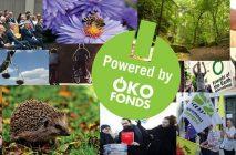 Spendenaufruf 2020 der Stiftung Oekofonds